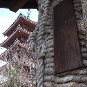 志度寺賞 「大わらじの霊場」 山中 茂