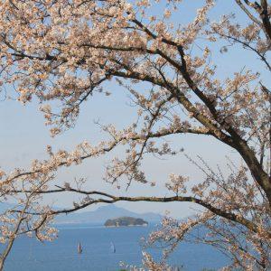 ええ景色賞 「春の内海」 松本直志
