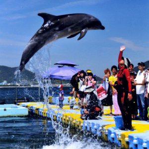 さぬき市長賞 優秀 「青空への跳躍」 須田 隆司