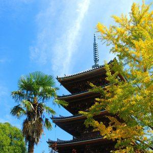 キッズ特別賞 「秋の五重塔」 藤澤 和叶