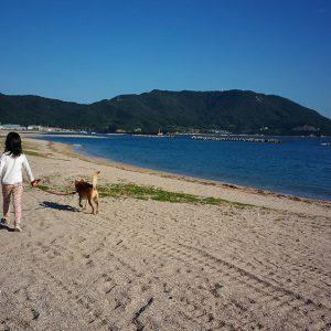 キッズ特別賞 「散歩」 泉 秀