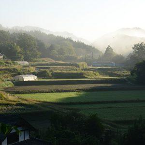 佳作 「田舎の風景」 白川 美成