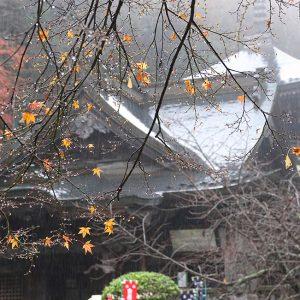 入選 「驟雨に烟る」 久保田 修