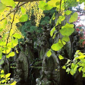 大窪寺賞 「深秋の仏たち」 坂東 千秋