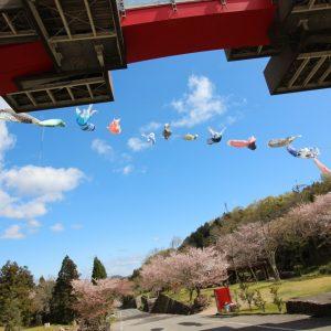 入選 「春日和」 木村 涼子