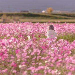 入選 「優しいピンクに包まれて」 cocoron.yuri