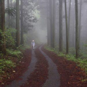 グランプリ 「結願の道」 安井 治夫